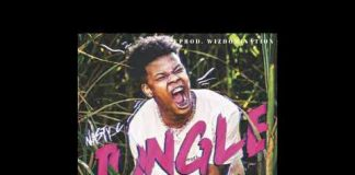 nasty c jungle instrumental